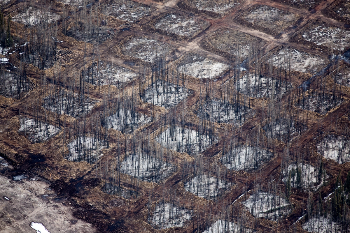 Alex McLean Oilsands 9 Checkerboard clearing of the overburden for seismic testing, Syncrude Aurora North Mine Site, Alberta, CA Blocks140406-0193