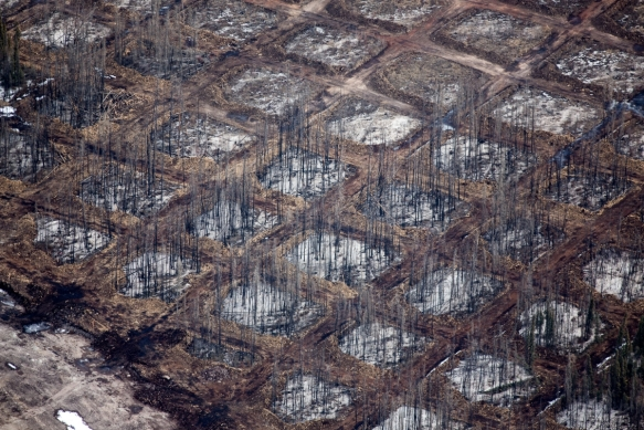 Alex McLean Oilsands 9 Checkerboard clearing of the overburden for seismic testing, Syncrude Aurora North Mine Site, Alberta, CA Blocks140406-0193